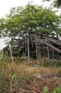 Abandoned glasshouse.