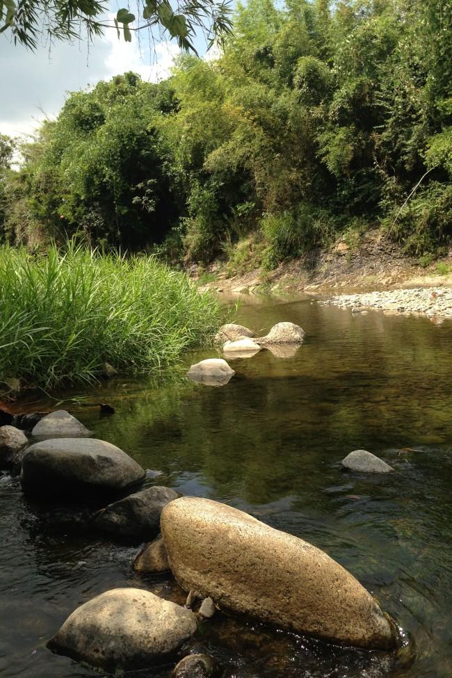 Creek in Misato