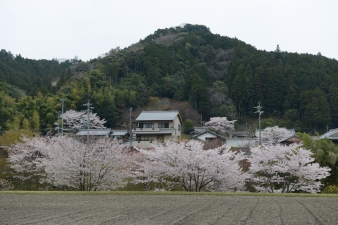 Typical rural Japan.
