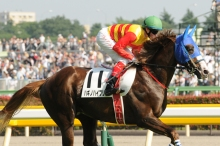 Craig Williams riding in the Japan Derby.