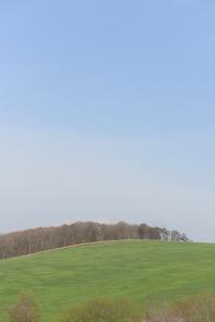 Typical Hokkaido scenery.