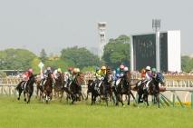 2014 Japan Derby, first lap