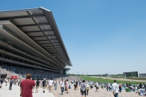 The grandstand at Tokyo Racecourse.