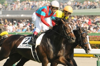 One and Only winning the 2014 Japan Derby.