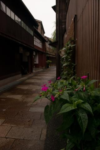 Old teahouse area