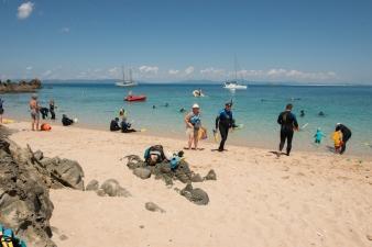 Snorkel time!