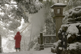 A worker clears snow from the bowed over bamboo at a shrine.