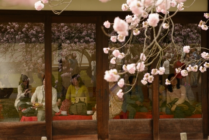 Visitors to the World Heritage Listed Daigoji Temple take a rest from blossom overload.