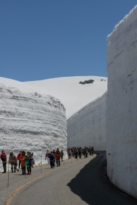 The Snow Corridor on the Tateyama Kurobe Alpine Route.