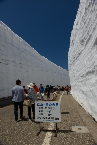 The Snow Corridor is the most popular attraction on the Tateyama Kurobe Alpine Route in when it opens in early spring.