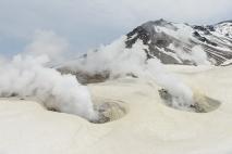 The very active fumeroles on Asahidake, a volcano in Daisetsuzan National Park,