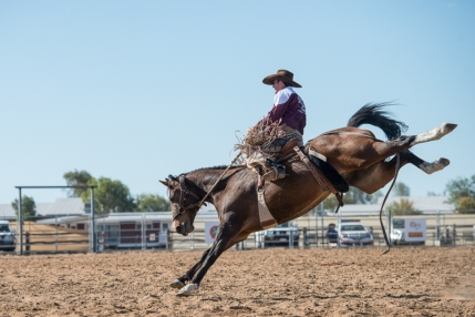 Saddle Bronc State of Origin Competition, RM Williams Muster